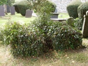 Charles Davies & Joseph Price graves